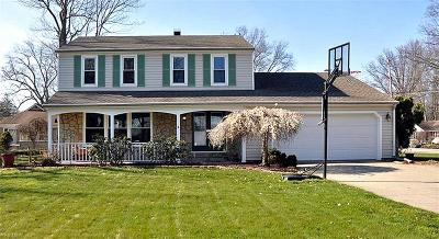 Single Family Home For Sale: 32071 Lake Rd