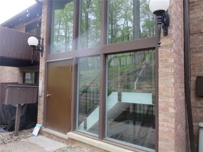 Brecksville Condo/Townhouse For Sale: 6885 Carriage Hill Drive #E-69