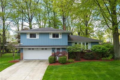 Seven Hills Single Family Home For Sale: 940 East Meadowlawn Blvd