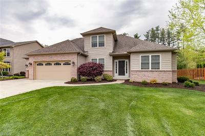 Strongsville Single Family Home For Sale: 21233 Castlewood Dr