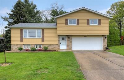 Single Family Home For Sale: 9223 Lincoln Dr
