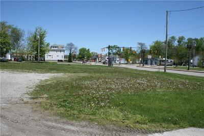 Lorain County Residential Lots & Land For Sale: 805 Middle Ave