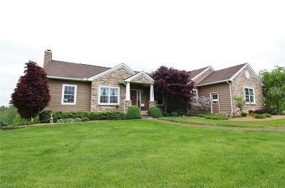 Muskingum County Single Family Home Active Under Contract: 6290 Foundry Drive