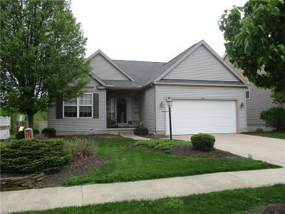 Medina County Single Family Home For Sale: 876 Queens Gate Way