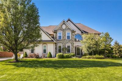 Westlake Single Family Home For Sale: 28852 Woodmill Dr