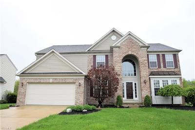 Broadview Heights Single Family Home For Sale: 950 Shelton Cir