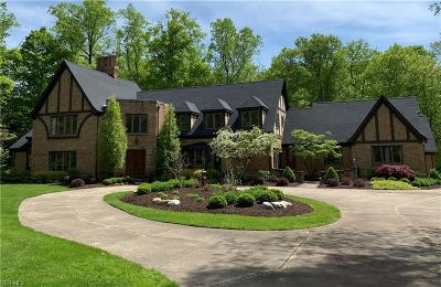 Hudson Single Family Home For Sale: 7385 McShu Lane