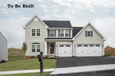 North Ridgeville Single Family Home For Sale: 123 Atlantic Avenue