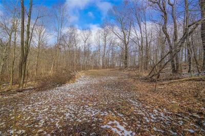 Licking County Residential Lots & Land For Sale: Cullison Road