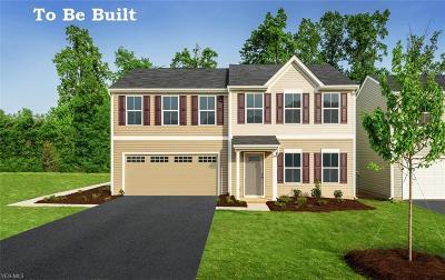 Medina County Single Family Home For Sale: 5681 Burlington Drive