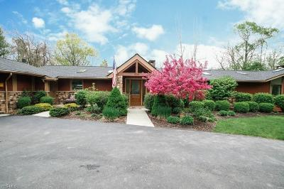 Chagrin Falls Single Family Home For Sale: 500 Solon Road