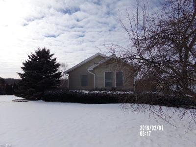 Single Family Home Active Under Contract: 11230 Youngstown Salem Road