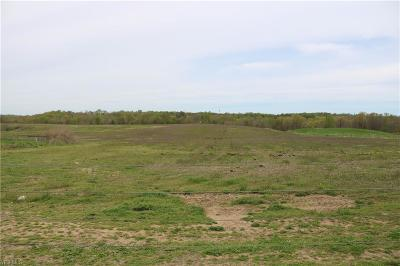 Muskingum County Residential Lots & Land For Auction: 7100 North River Rd