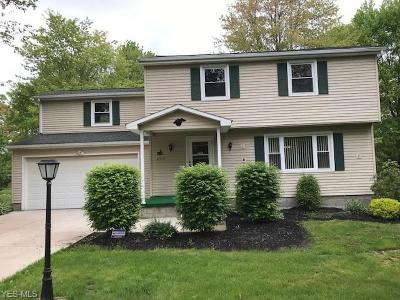 Canfield Single Family Home For Sale: 4354 Timberbrook Drive