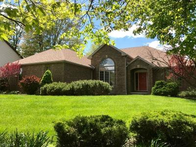 Independence Single Family Home For Sale: 6392 Ledgewood Drive