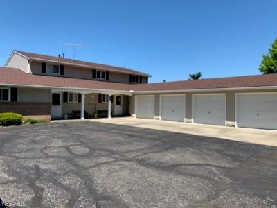 Elyria Condo/Townhouse For Sale: 8745 West Ridge Rd #D