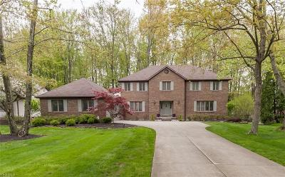 Solon Single Family Home Active Under Contract: 32885 Cannon Road