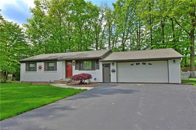 Youngstown Single Family Home Active Under Contract: 4818 Westchester Drive
