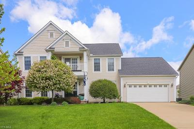 Copley Single Family Home For Sale: 4427 Briarwood Dr