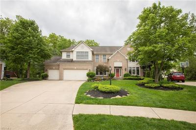 Strongsville Single Family Home For Sale: 19945 Colleen Ct