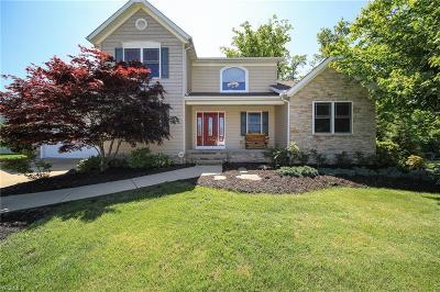 Madison Single Family Home For Sale: 1591 Kimball Drive