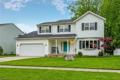 Lorain County Single Family Home Contingent: 351 Oakdale Cir