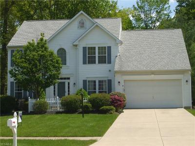 Olmsted Falls Single Family Home For Sale: 9061 Lakeview Dr.