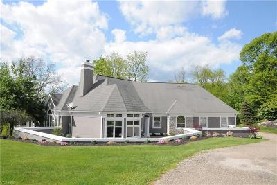 Muskingum County Single Family Home For Sale: 295 Cobblepond Rd
