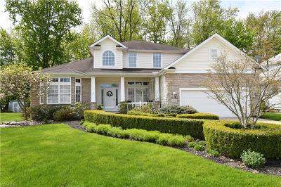 Lake County Single Family Home For Sale: 38712 Chagrin Mills Court