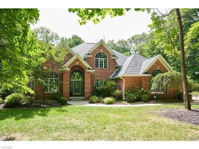 Medina County Single Family Home For Sale: 2174 Thoroughbred Dr