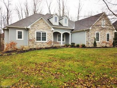 Medina County Single Family Home Coming Soon: 5975 Woodland View Dr