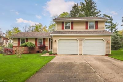 Lorain County Single Family Home For Sale: 352 Briar Lake Dr