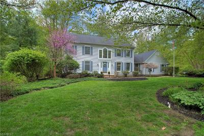Chagrin Falls Single Family Home For Sale: 69 Waterford Dr