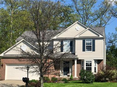 Broadview Heights Single Family Home For Sale: 607 Cornell Dr