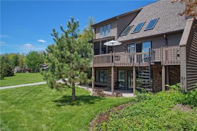 Chagrin Falls Condo/Townhouse For Sale: 170 N Pintail Drive
