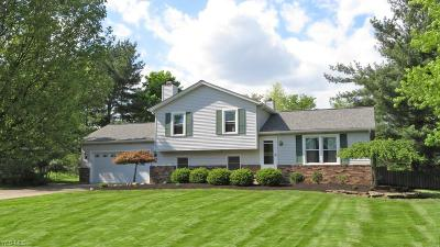 North Royalton Single Family Home Contingent: 3060 Lodge Dr