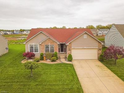 Lorain County Single Family Home For Sale: 3900 Martins Run Dr