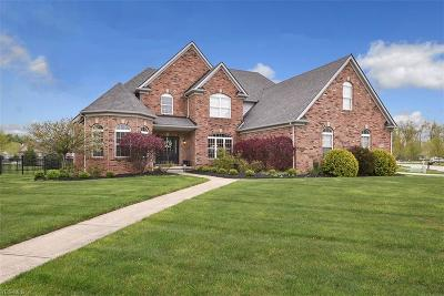 Lorain County Single Family Home Contingent: 31859 Pondside Dr