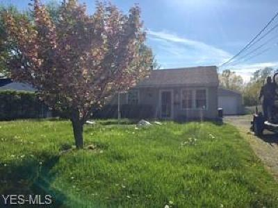 Lorain County Single Family Home For Sale: 920 East Dr