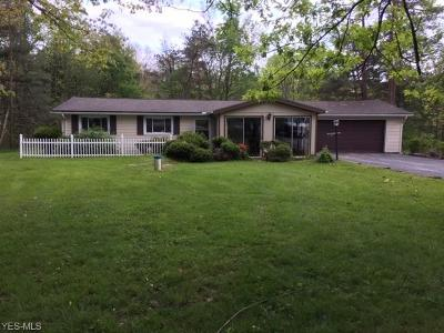 Chagrin Falls Single Family Home Coming Soon: 8721 North Spring Valley Park Dr