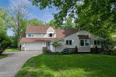 Beachwood Single Family Home For Sale: 26907 N Woodland Road