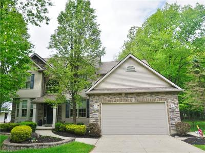 Strongsville Single Family Home For Sale: 18205 Hunt Rd