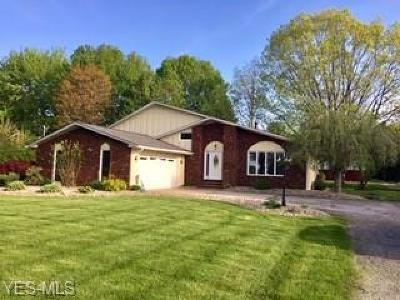 Lorain County Single Family Home For Sale: 48977 Middle Ridge Rd