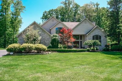 Chagrin Falls Single Family Home For Sale: 17380 Tall Tree Trail