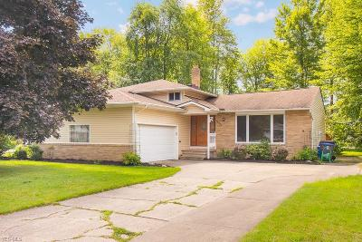 Solon Single Family Home For Sale: 33370 Outley Park Drive