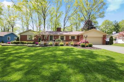 Canfield Single Family Home Active Under Contract: 295 Sleepy Hollow Drive