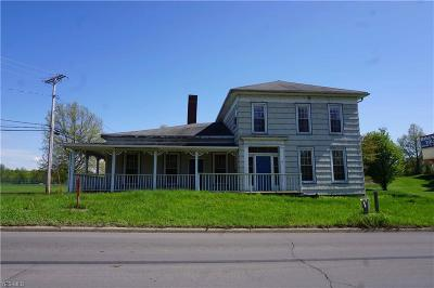 Ashtabula Commercial For Auction: 4538 N Ridge Road