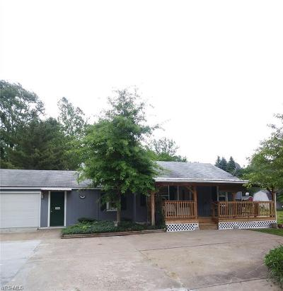 Lorain Single Family Home For Sale: 3823 Jaeger Road