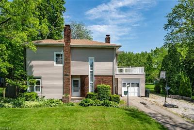 Stark County Single Family Home For Sale: 253 Vincent St