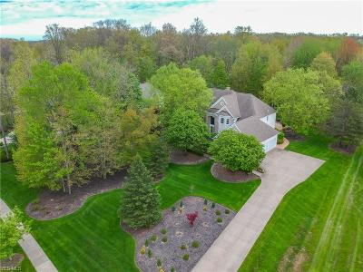 Beachwood, Chagrin Falls, Lyndhurst, Seven Hills, Solon, Aurora, Hudson, Kent, Reminderville, Sagamore Hills, Twinsburg Single Family Home For Sale: 6223 Penfield Ln